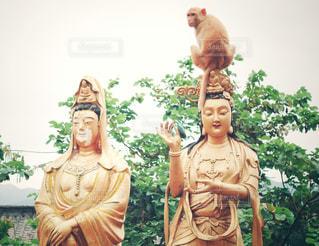 猿と仏様の写真・画像素材[1766805]