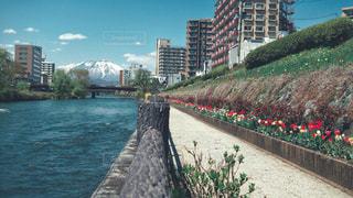 岩手山の写真・画像素材[2111227]
