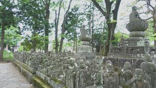 五百羅漢の写真・画像素材[2153835]