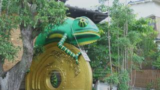 5円玉とカメレオンの写真・画像素材[2153837]