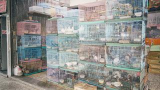 台湾鳥街の写真・画像素材[2238335]