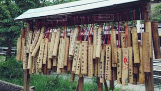 台湾の竹筒の写真・画像素材[2238415]