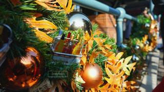 クリスマスの飾りの写真・画像素材[2818265]