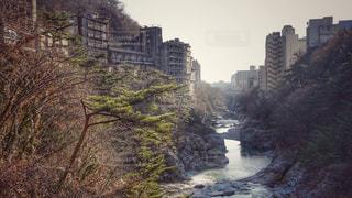 鬼怒川廃墟群の写真・画像素材[2818726]