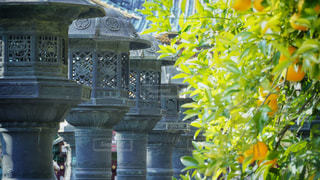 上野東照宮の写真・画像素材[2861044]