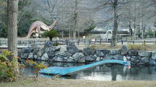 恐竜公園の写真・画像素材[3132693]