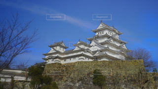 姫路城の写真・画像素材[3133553]