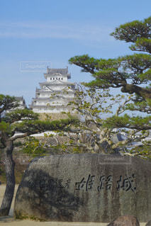姫路城の写真・画像素材[3133556]
