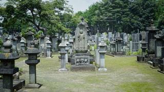 豪徳寺の墓地の写真・画像素材[3493902]