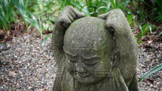 柿生の浄慶寺にての写真・画像素材[3512513]