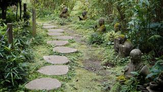柿生の浄慶寺にての写真・画像素材[3512518]