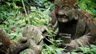 柿生の浄慶寺にての写真・画像素材[3512515]