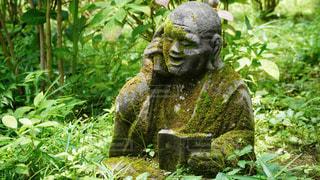 柿生の浄慶寺にての写真・画像素材[3512532]