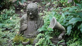 柿生の浄慶寺にての写真・画像素材[3512540]