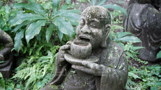 柿生の浄慶寺にての写真・画像素材[3512541]