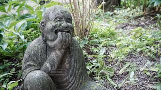 柿生の浄慶寺にての写真・画像素材[3512542]