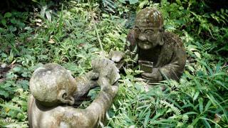 柿生の浄慶寺にての写真・画像素材[3512545]