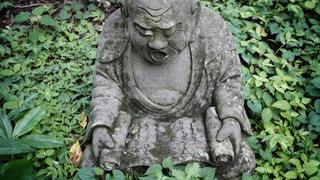 柿生の浄慶寺にての写真・画像素材[3512551]