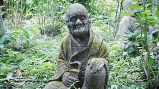柿生の浄慶寺にての写真・画像素材[3512554]