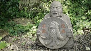 柿生の浄慶寺にての写真・画像素材[3512555]