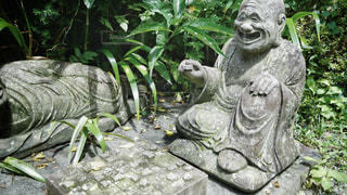 柿生の浄慶寺にての写真・画像素材[3512556]