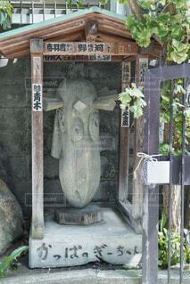 かっぱ寺の写真・画像素材[4286927]