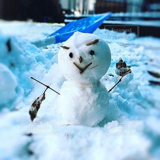 小枝雪だるマンの写真・画像素材[2840445]