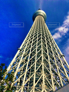 東京スカイツリーの写真・画像素材[2936902]