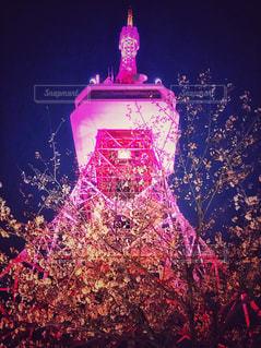 桜とタワーの写真・画像素材[2956446]