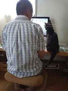 パソコンを見る猫と男性の写真・画像素材[2912762]