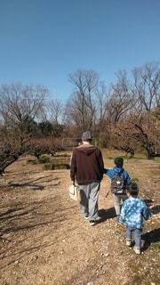 緑地公園を親子で散歩の写真・画像素材[3024041]