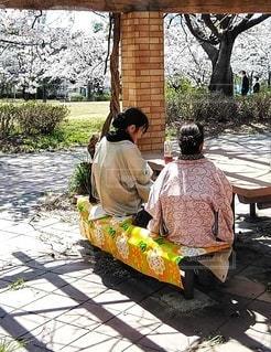 和装でお花見の女性2人の写真・画像素材[3079344]