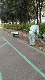公園を掃除する人の写真・画像素材[3112108]