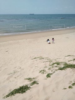 砂浜で遊ぶ母娘の写真・画像素材[3139438]