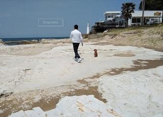 海岸を犬と散歩する男性の写真・画像素材[3143968]