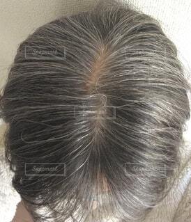 白髪混じりの頭頂部の写真・画像素材[3682799]