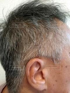 白髪混じりの男性の横顔の写真・画像素材[4554285]