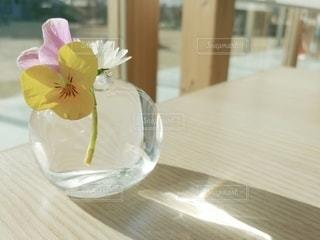 花瓶のビオラの写真・画像素材[3021683]