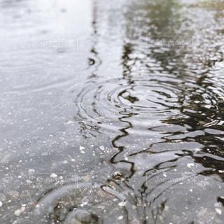水溜り 波紋の写真・画像素材[3058323]