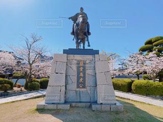 春の藤堂高虎像の写真・画像素材[3077338]