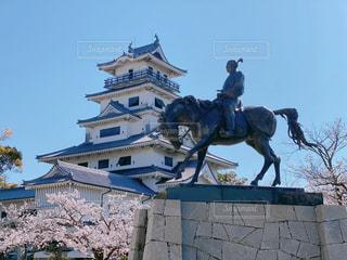 桜と今治城と藤堂高虎の写真・画像素材[3077343]