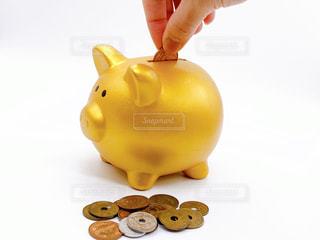 黄金の豚の貯金箱の写真・画像素材[3082997]