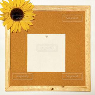 コルクボードとひまわりの写真・画像素材[3134843]