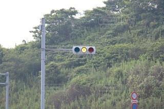 黄色信号の写真・画像素材[3534203]