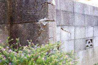 住宅の庭の割れたブロック塀の写真・画像素材[4011543]