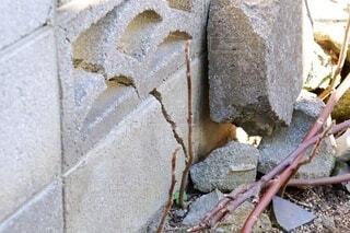 住宅の庭の割れたブロック塀の写真・画像素材[4011542]