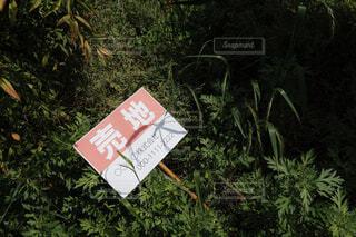 売地 土地所有者の撮影許可ありの写真・画像素材[4400031]