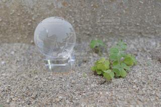 ガラス製の地球儀の写真・画像素材[4400044]