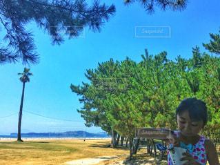 少女の夏休みの写真・画像素材[2883603]