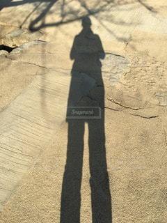 女性の写真・画像素材[112919]